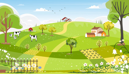 Rural farm landscape with green fields, farm hous, barn, animals cow, blue sky and clouds, Vector cartoon Spring or Summer landscape,Eco village or Organic farming in uk