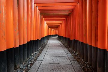 Wall Mural - Fushimi Inari Shrine in Kyoto, Japan
