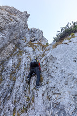 Fototapete - climber on mountain