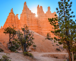 Wall Murals Coral sand stone with sun rays in Bryce Canyon National Park