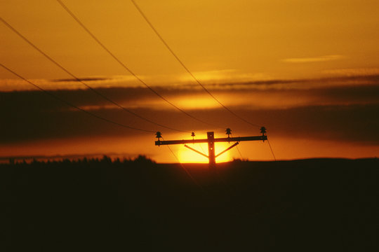 Silhouetted telephone pole
