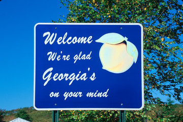 Wall Mural - Welcome to Georgia Sign
