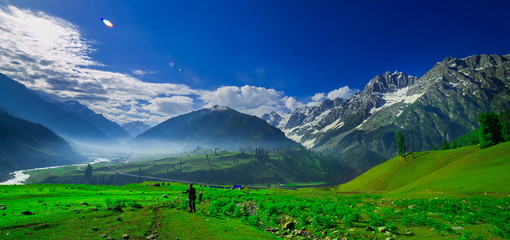 Wall Murals Green Beautiful landscape view of Sonamarg in Thajiwas park in Jammu and Kashmir, India