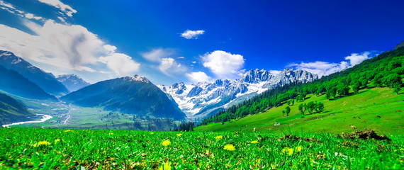 Zelfklevend Fotobehang Donkerblauw Beautiful landscape view of Sonamarg in Thajiwas park in Jammu and Kashmir, India