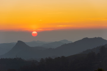 Scenic view over tea plantation near Munnar in Kerala, South India during sunset