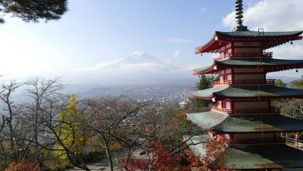 Chureito Pagoda Temple with red maple leaves or fall foliage in autumn season