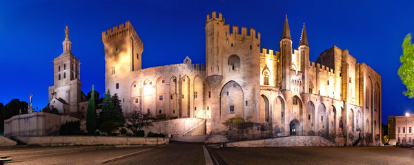 Panorama of palace of the Popes, once fortress and palace, one of largest and important medieval Gothic buildings in Europe, at night, Avignon, France Fototapete