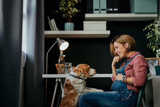 Middle aged pregnant woman smiling at pet beagle