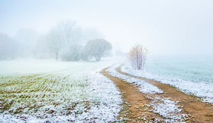 Wall Murals Northern Europe A beautiful scenery of a gravel road in the late autumn with first snow. Northern Europe landscape at the beginning of winter.