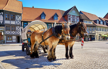 Horse drawn carriage for tourists in the center of the old town of Wernigerode. Saxony-Anhalt, Germany
