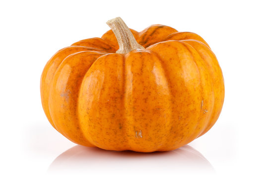 Single mini pumpkin isolated on white