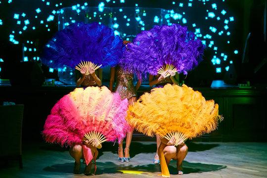 cabaret dancer over dark background. The group of cabaret dancers. Faces hidden behind the feathers.