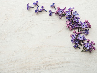 Wall Murals Lilac Beautiful, bright lilac lying on a white, wooden table. View from above, close-up