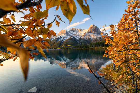 Sunrise on Mount Lawrence Grassi with golden leaves reflection on Rundle Forebay reservoir at Canmore