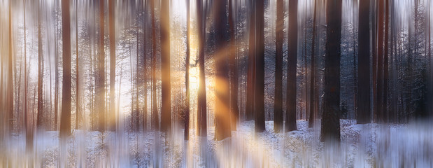 Papiers peints Forets panorama, winter forest landscape, rays of the sun in a snowy landscape, snow weather sunset in the forest