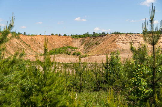 View of the sand quarry through the thickets of young fir