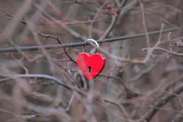 Einsame Liebe: Schloss Herz an Drahtseil zwischen Zweigen