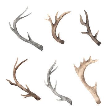 Watercolor rustic set of deer