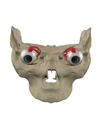 Eye muscles anatmoy front view 3d render