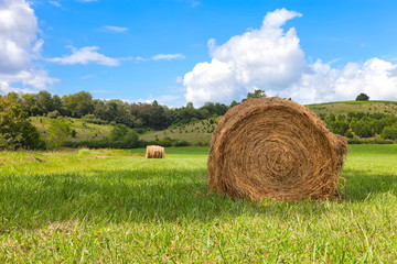 Rural scene with bails of hay in Virginia USA