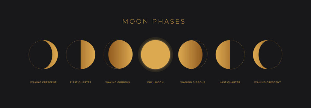 Phases of a golden moon on a black background. The whole cycle from the new moon to the full moon. Astronomy and lunar calendar vector illustration.