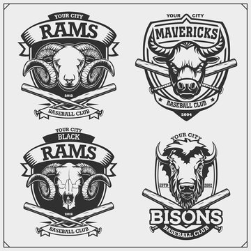Baseball badges, labels and design elements. Sport club emblems with ram, bull and bison. Print design for t-shirts.