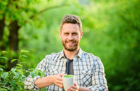 Refreshing drink. Man bearded tea farmer hold mug nature background. Green tea plantation. Whole leaf tea. Pleasant moment of self care. Natural drink. Healthy lifestyle. I prefer green tea