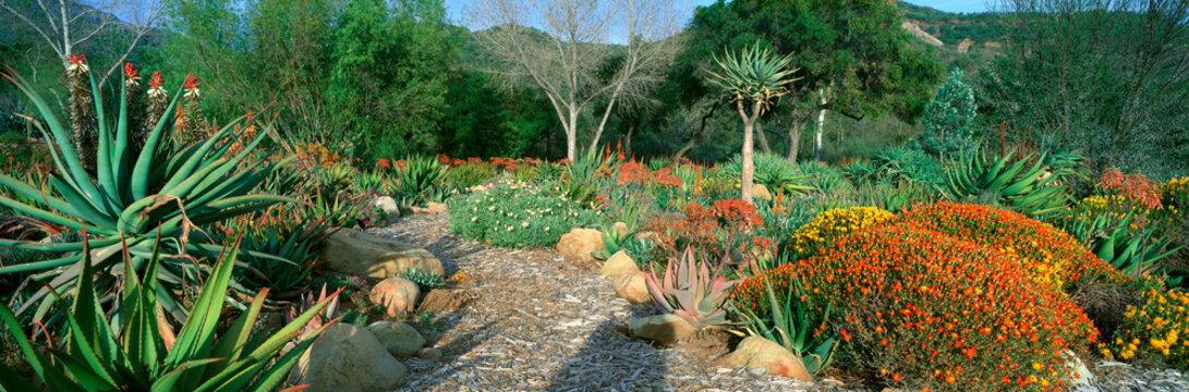 Garden At Center for Earth Concerns, Ojai, California