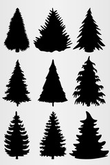Set of nine conifers. Set for the design of various works, brochures, posters, etc.