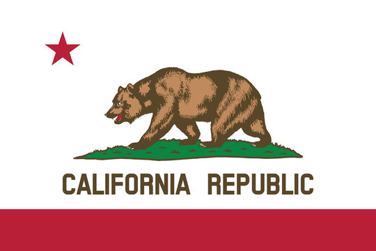 Vector of beautiful California Republic state flag..