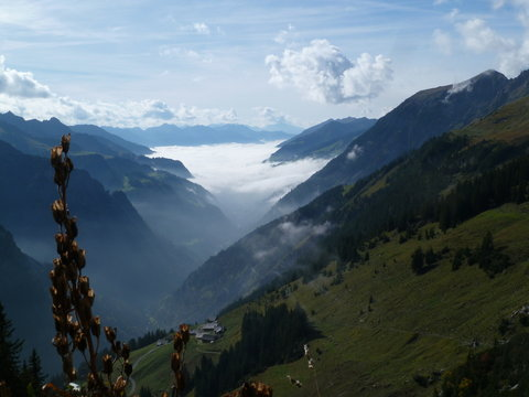 Talnebel  im Großen Walsertal