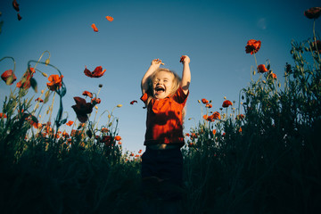 Happiness. Cheerful boy in the field with poppies. Happy walk in nature with a child.