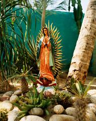 Spoed Foto op Canvas Historisch mon. Virgin of Guadalupe statue in rock garden with cactus plants