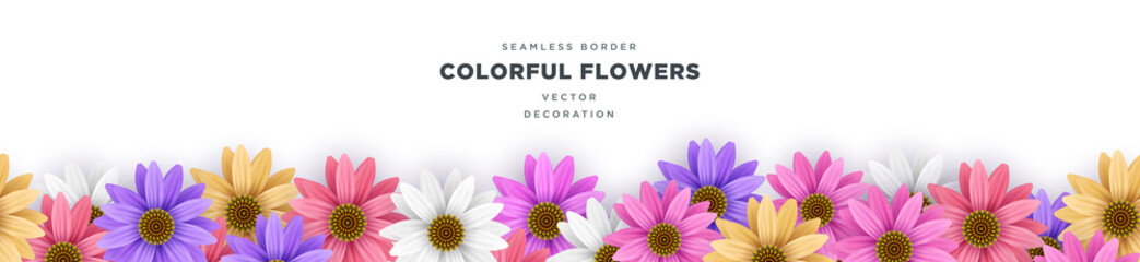 Colorful Gerbera Daisy flower border frame vector decoration template