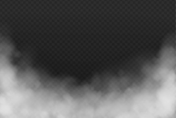 Garden Poster Smoke Smoke or fog isolated transparent effect on dark background. White cloudiness, mist or smog background. Vector illustration