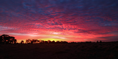 Türaufkleber Hochrote Panoramic image of vibrant pink and purple sunset sky in Central Victoria, Australia