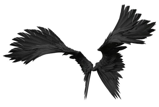 3D Rendered Fantasy Angel Wings on White Background - 3D Illustration