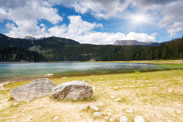 Wall Mural - Black lake in Durmitor national park.
