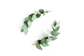 Wall Mural - Wreath frame made of branches eucalyptus and leaves isolated on white background. lay flat, top view