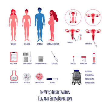 In vitro Fertilization Big Set. Egg retrieval and donation. Embryo cultivation and transfer. Surrogacy and Pregnancy. Vector illustration.
