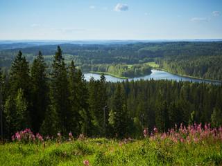 Idyllic finnish summer landscape view from the Sappee skiing center on Sappeenvuori hill, Finland.