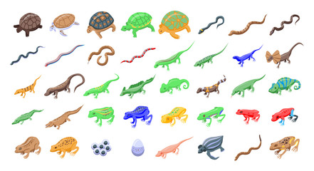 Reptiles and amphibians icons set. Isometric set of reptiles and amphibians vector icons for web design isolated on white background Wall mural