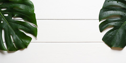 Leaves from a Swiss Cheese Plant (Monstera deliciosa) with waterdrops on a rough white wooden table. With copy space, size image 2x1.