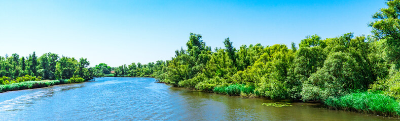 river Amer. National park Hollandse Biesbosch. Drimmelen, The Netherlands Fotomurales