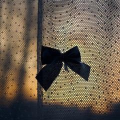 Türaufkleber Schmetterlinge im Grunge butterfly ribbon bowtie at dawn