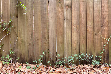 old wooden fence fall leaves scene