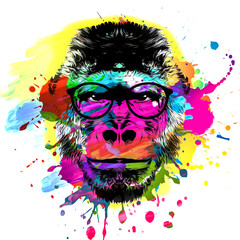 artistic monkey muzzle in eyeglasses