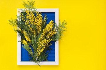 Bright yellow mimosa flowers and green branches  on blue pattern texture of crumpled paper in the volume of horizontal lines with white photo frame, yellow background. Spring and Easter  Frame Concept
