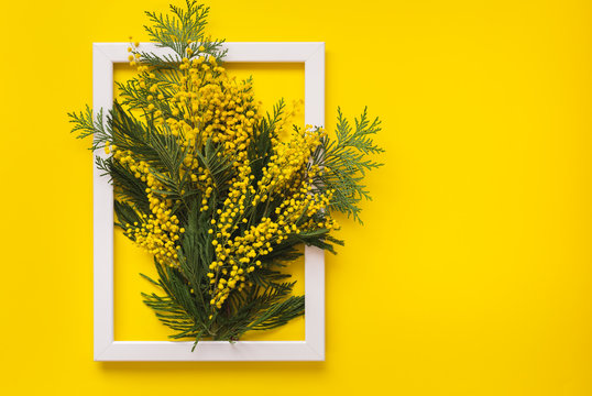 Mimosa flowers and green branches  on yellow pattern texture of crumpled paper with white photo frame, yellow background. Spring and Easter Frame Concept, flat lay, blank space