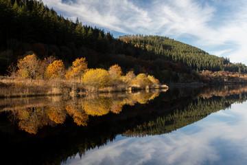 Bassenthwaite and autumn trees